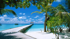 Tropics Maldives Hotel Caribbean Coastal and Oceanic Landforms