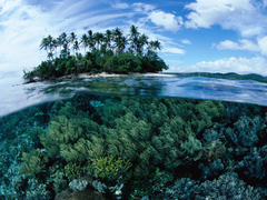 view papua new guinea sea resort paradise beach wallpapers