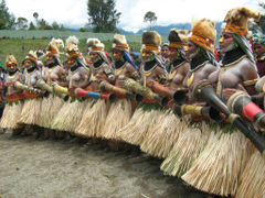 Watch the most recent and popular Papua New Guinea photos of