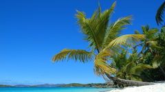 Beach Solomon Islands South Pacific Water Palms Summer Sea