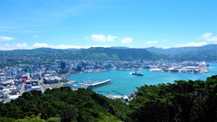 new zealand wellington wallpapers and backgrounds