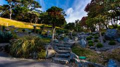 Image New Zealand Wellington Botanical garden Nature 3840x2160