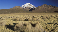 nature Landscape Mountain Bolivia Snow Valley Plants Hill