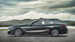 BMW Shows Soft