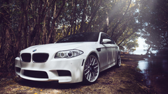 Bmw m5 f10 white wallpapers