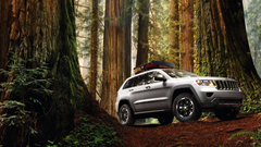Forest cars jeep grand cherokee Wallpapers