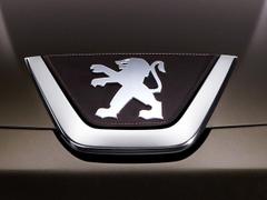 Pièces détachées pour Peugeot