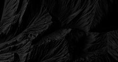 BLACK series by Jean