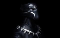 Wallpapers mask armor Black Panther image for desktop section