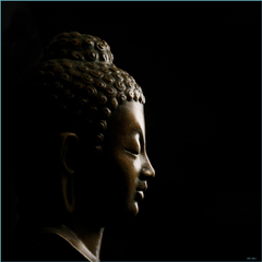 Seven Unexpected Ways Buddha Wallpapers anupghosal