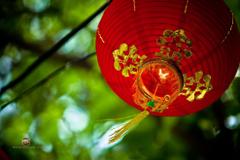 Chinese New Year Wallpapers by Matt Brandon