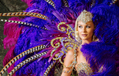 carnival girl dress decoration feathers HD wallpapers
