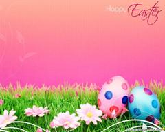 HD Bunnies And Easter Wallpapers Desktop Backgrounds