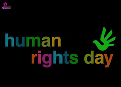 Human Rights Day Wallpapers HD
