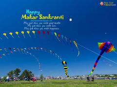 Makar Sankranti Festival Wallpapers Image Photos