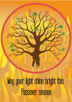 Shine your Light Passover