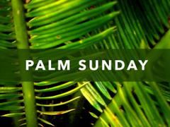 Palm Sunday JAM Magheralin Parish