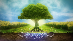 Happy World Environment Day Wallpapers Wallpapers