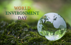 World Environment Day Protect For Wallpapers