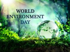 World Environment Day Hand Nature Hd Image