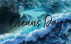 Happy World Oceans Day Surfing Hd Wallpapers