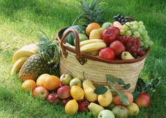 Fruit Basket HD Wallpapers