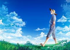 Wallpapers the sky clouds hat meadow guy Gintama