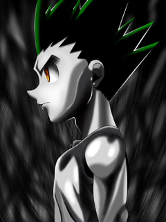 Gon css done with iPad by rbxx