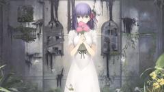 Sakura Matou Key Visual Heaven s Feel
