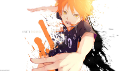 Athah Anime Haiky Haikyuu Sh y Hinata 13 19 inches Wall Poster