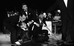 Frank Sinatra HD Wallpapers