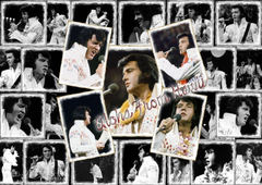 Elvis Wallpapers