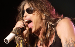 Awesome Steven Tyler Wall