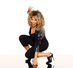 Tina Turner Wallpapers High Resolution and Quality