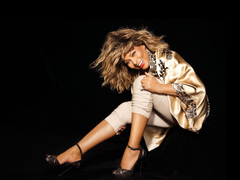 Tina Turner Wallpapers 100 Quality Tina Turner HD Pictures