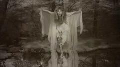 Stevie Nicks blames psychiatry not abuse of illegal drugs for