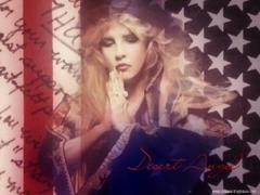 A Spirit s Bucket List See Stevie Nicks in Concert