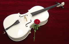 Cello Instruments Philharmonic Wallpapers