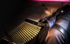 Wallpapers Accordion music musician accordion image for desktop