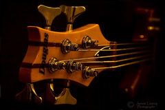 Wallpapers For Ibanez Bass Guitar Wallpapers