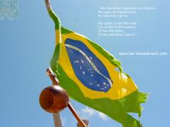 Berimbau Brazil Contemporâneo Brasil Flag Sky Blue Bahia Photo