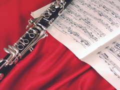 Robert Marcellus Clarinet Master Class Audio Archives Available
