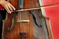 bass cello instrument music violin 4k wallpapers and backgrounds
