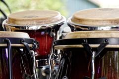 bongo drums image