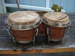 Rumba Instruments Cuban Bongo Project