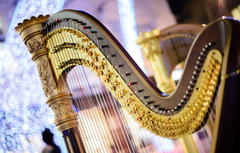 Wallpapers strings music blur sound harp concert tool music