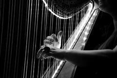 grayscale photo of harp image