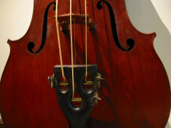 Flickr photos tagged octobass