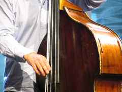File Double Bass