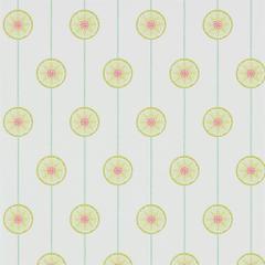 Lime Fuchsia 214755 Tambourine Sanderson Papavera Wallpapers